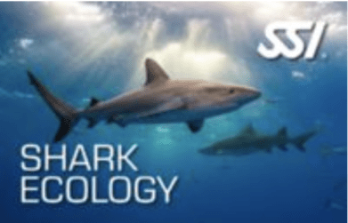 ecology speciality programs - shark ecology