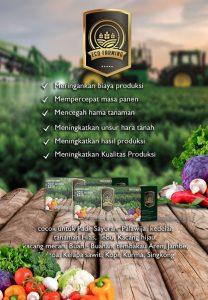 Tehnik Khusus Pemupukan Eco Farming