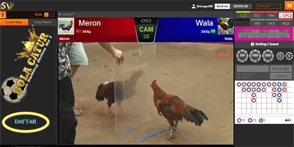 Situs Judi Sabung Ayam s128 dan sv388