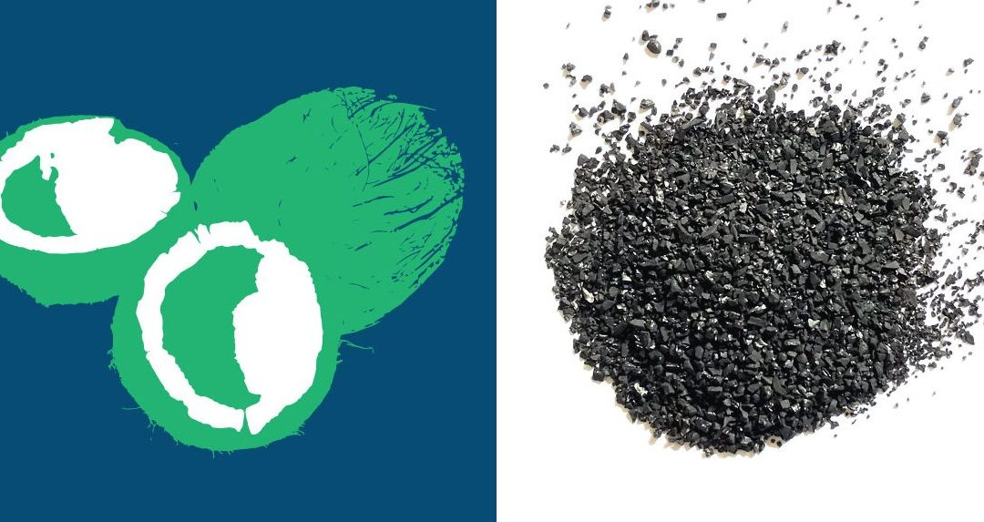 How a Coconut Becomes Activated Carbon
