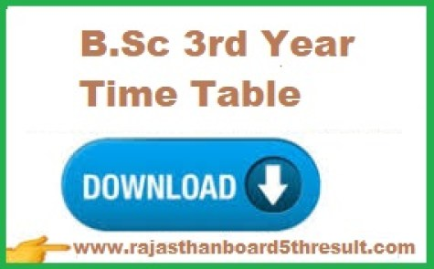 B.Sc 3rd Year Time Table 2021