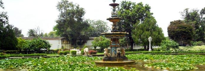Rajasthani-tadka