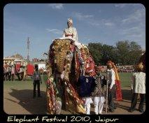 Rajasthan Diwas