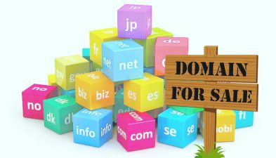 How to Buy and Sell Domain Names for Big Cash Profits - Raj Domains