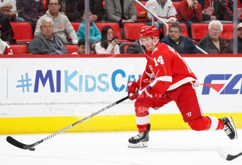 Apr 5, 2018; Detroit, MI, USA; Detroit Red Wings right wing Gustav Nyquist (14) skates with the puck during the second period against the Montreal Canadiens at Little Caesars Arena. Mandatory Credit: Raj Mehta-USA TODAY Sports