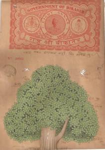 Kadamba Tree c007