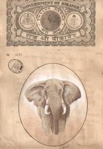 Elephant j001