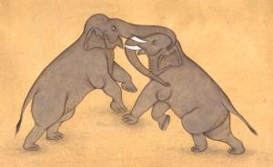 Elephant j003