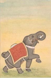 Elephant j006