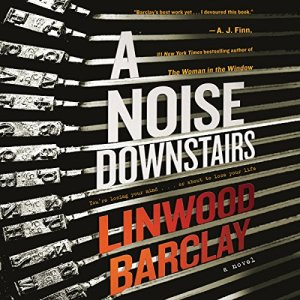A Noise Downstairs audiobook cover art