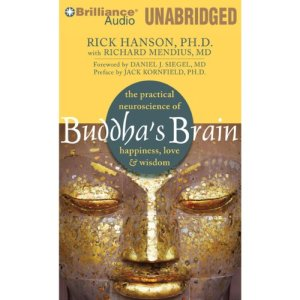 Buddha's Brain audiobook cover art