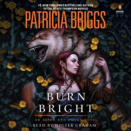 Burn Bright audiobook cover art