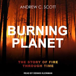 Burning Planet audiobook cover art