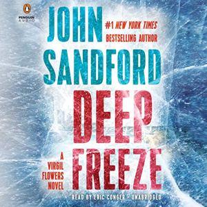 Deep Freeze audiobook cover art