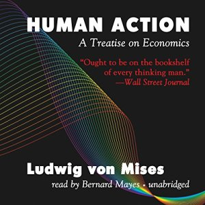 Human Action audiobook cover art