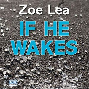 If He Wakes audiobook cover art