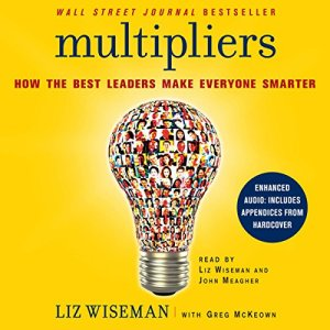 Multipliers audiobook cover art
