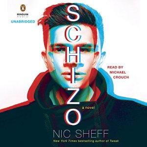Schizo audiobook cover art