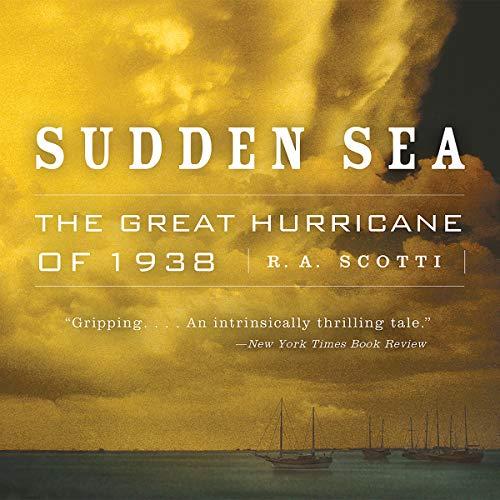 Sudden Sea audiobook cover art