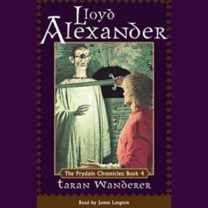 Taran Wanderer audiobook cover art