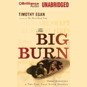 The Big Burn audiobook cover art