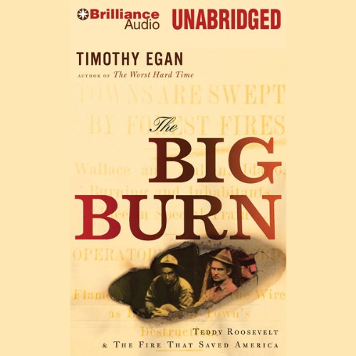 The Big Burn audiobook cover art