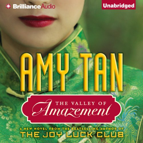 The Valley of Amazement audiobook cover art