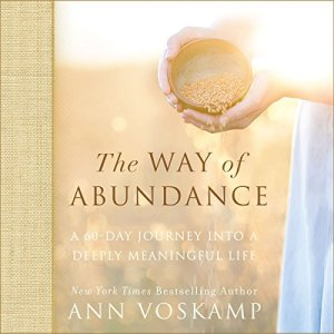 The Way of Abundance audiobook cover art