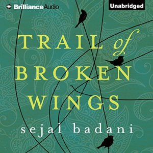 Trail of Broken Wings audiobook cover art