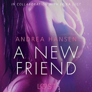 A New Friend audiobook cover art