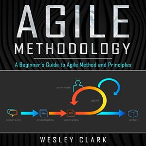 Agile Methodology audiobook cover art