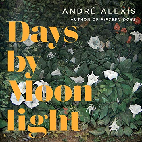 Days by Moonlight audiobook cover art