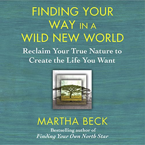 Finding Your Way in a Wild New World audiobook cover art