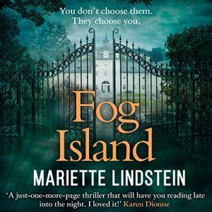 Fog Island audiobook cover art