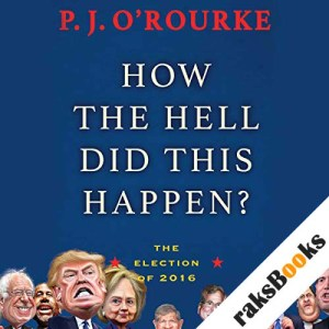 How the Hell Did This Happen? audiobook cover art