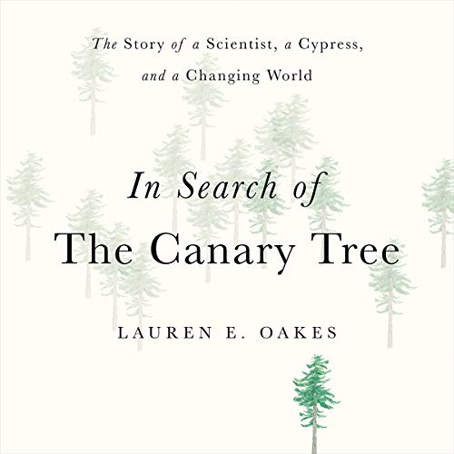 In Search of the Canary Tree audiobook cover art