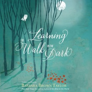 Learning to Walk in the Dark audiobook cover art