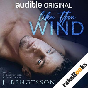 Like the Wind audiobook cover art