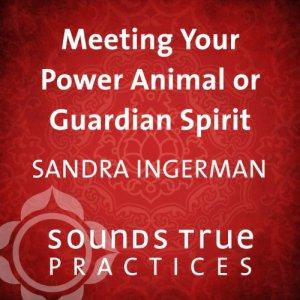 Meeting Your Power Animal or Guardian Spirit audiobook cover art