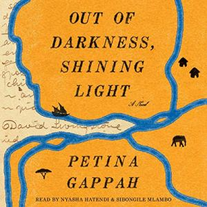 Out of Darkness, Shining Light audiobook cover art
