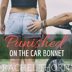 Punished on the Car Bonnet audiobook cover art