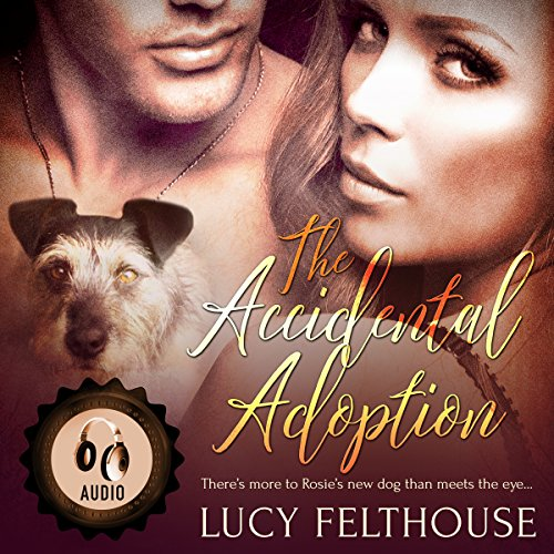The Accidental Adoption audiobook cover art