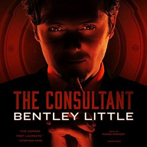 The Consultant audiobook cover art