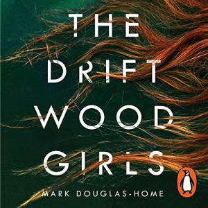 The Driftwood Girls audiobook cover art
