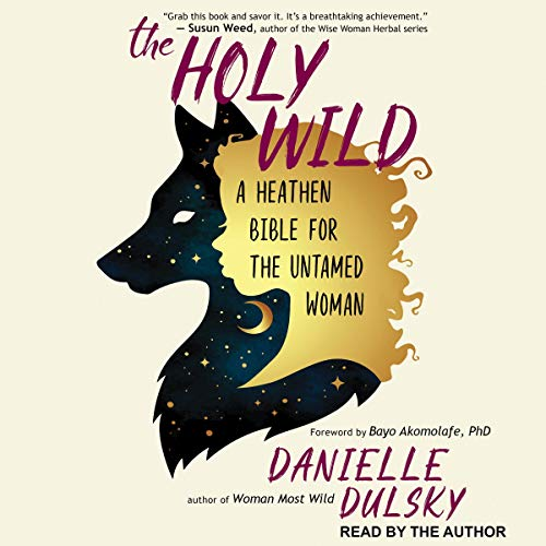 The Holy Wild audiobook cover art