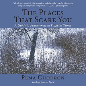 The Places That Scare You audiobook cover art