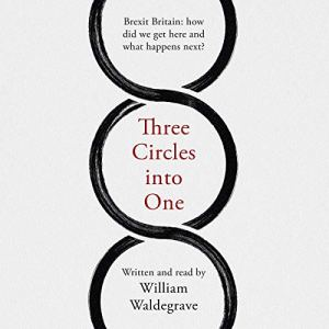 Three Circles Into One audiobook cover art