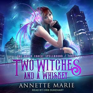 Two Witches and a Whiskey audiobook cover art