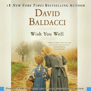 Wish You Well audiobook cover art