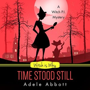 Witch Is Why Time Stood Still audiobook cover art